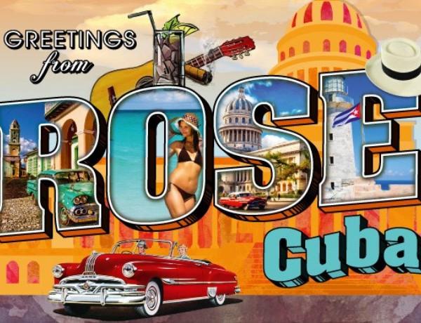 Rose Cuba