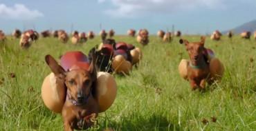 M&M Global's 10 favourite Super Bowl 50 adverts
