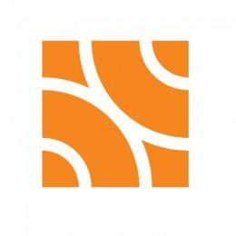 appnexus-logo3
