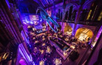 Hope the Blue Whale set to take centre stage at M&M Global Awards next week