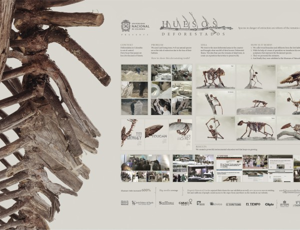 Deforested Bones